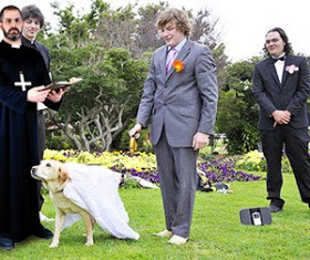 WTH? California allows first-ever state recognized human-animal marriage?